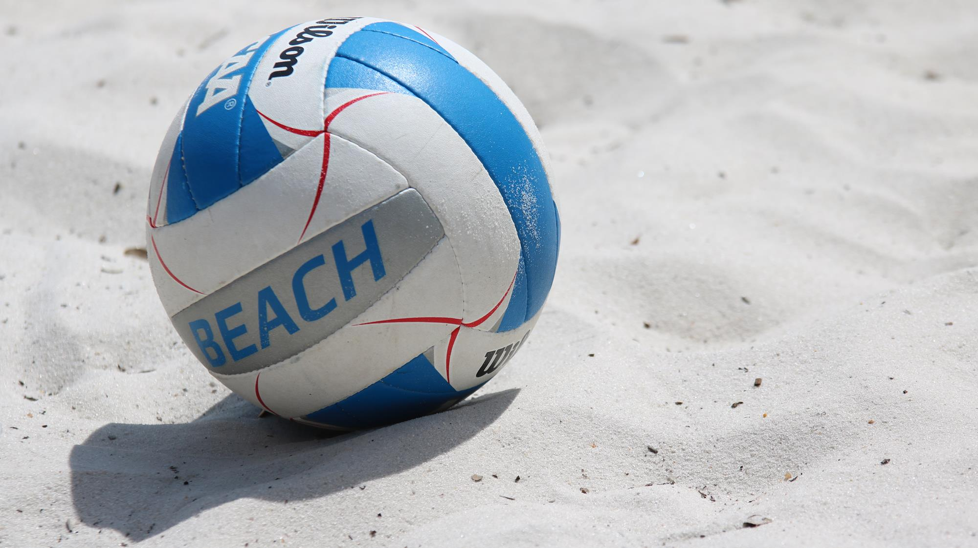 Cougars Announce 2019 Beach Volleyball Slate College Of Charleston Athletics